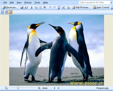 microsoft-office-picture-manager