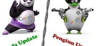 گوگل پاندا و گوگل پنگوئن چیست ؟