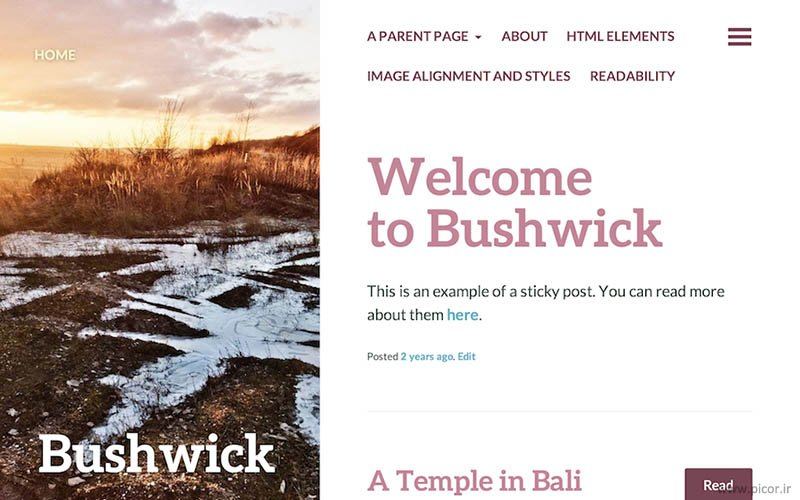 دانلود قالب BushWick وردپرس