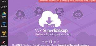 بکاپ و پشتیبان گیری در وردپرس با افزونه Super Backup Clone