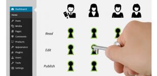 تغییر سطح دسترسی کاربران در وردپرس با افزونه Types Access