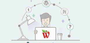 wordpress.pic