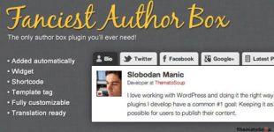 نمایش اطلاعات نویسنده با افزونه Fanciest Author Box