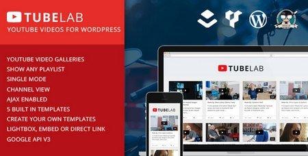 ایجاد سایت اشتراک گذاری ویدئو با وردپرس با افزونه Tubelab