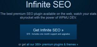 سئو و بهینه سازی وردپرس با افزونه Wpmu Dev Infinite Seo