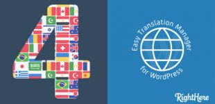 ترجمه سایت وردپرس با افزونه Easy Translation Manager