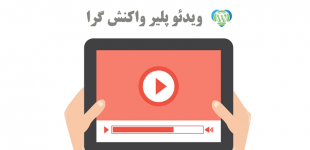responsive-video-player-wordpress