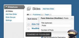 ایجاد اسلایدر حرفه ای ووکامرس با افزونه Wooslider