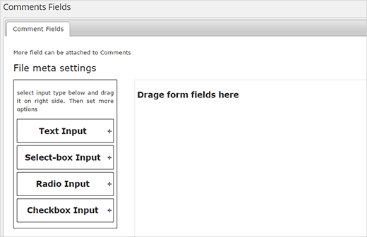 custom-form-fields