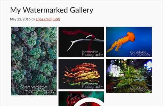 watermarkedgallery