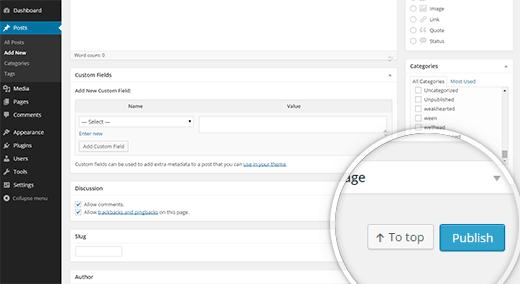 publish-button-bottom