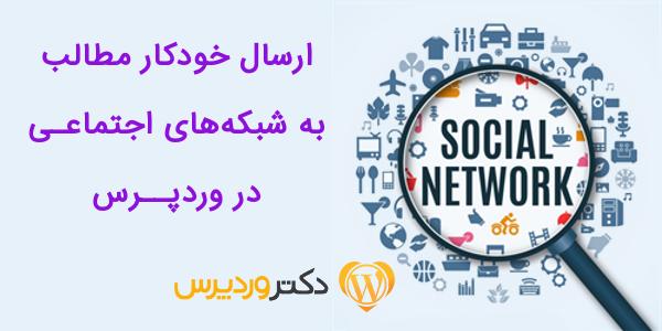 Blog2Social doctorwp
