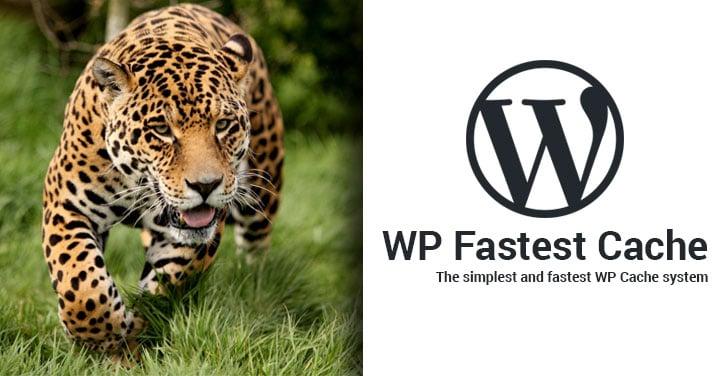 افزونه WP Fastest Cache